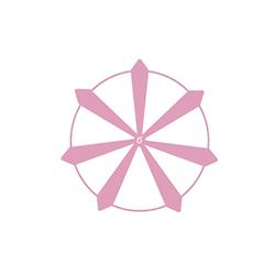 picto-rose-des-vents